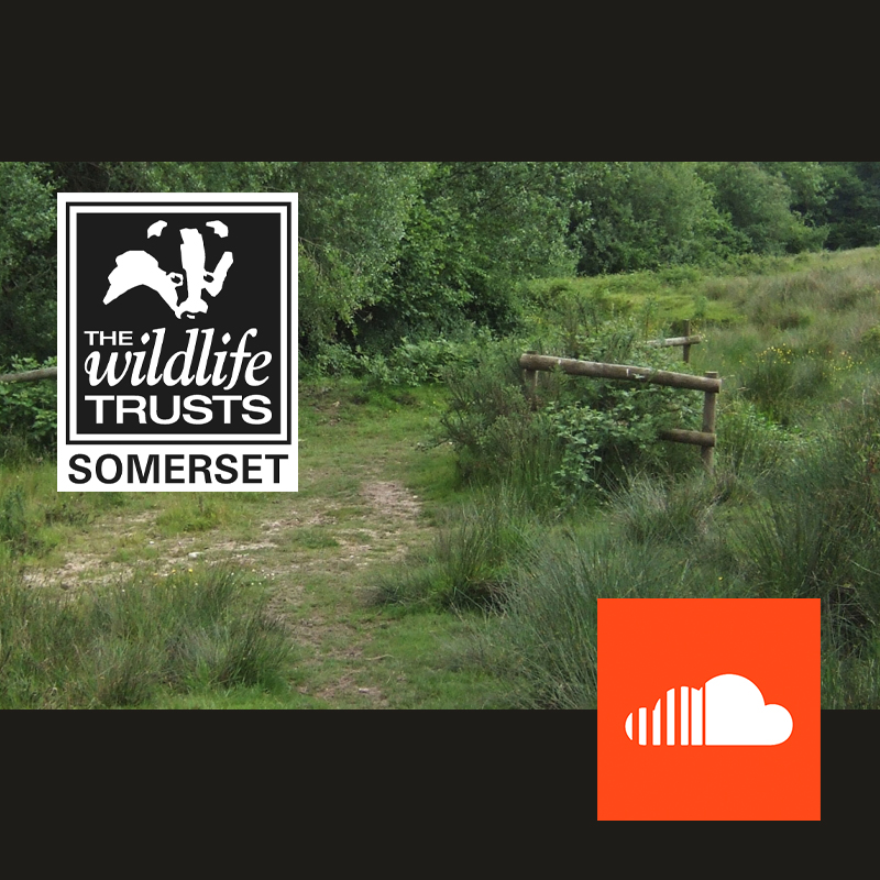 Jan Hobbs nature reserve podcast
